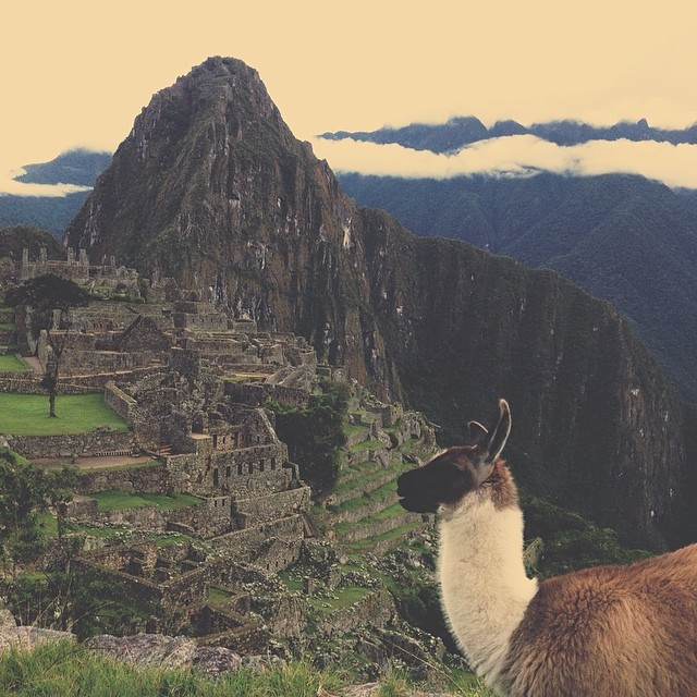 Quotes that Inspire Travel- Machu Picchu Edition